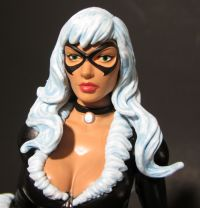 Black Cat closeup 2